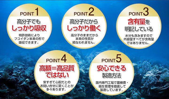 5大ポイント2
