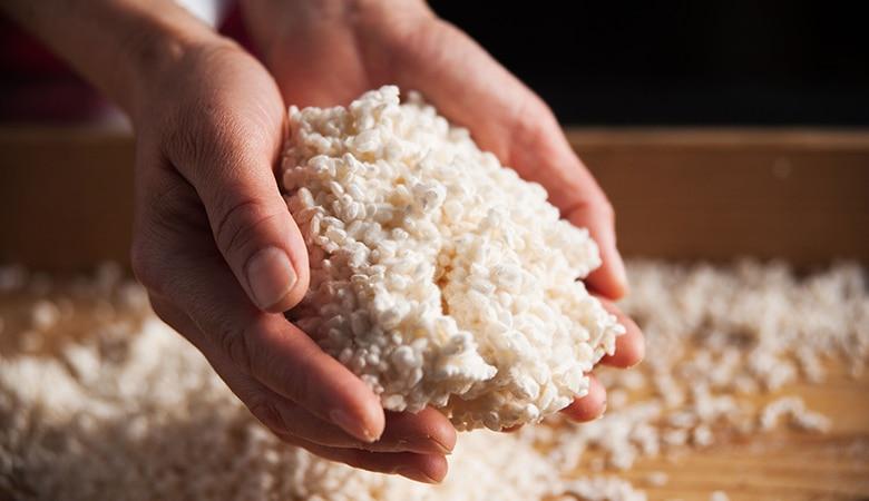 和食を支える麹の存在イメージ