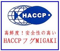 HACCPフグMIGAKI