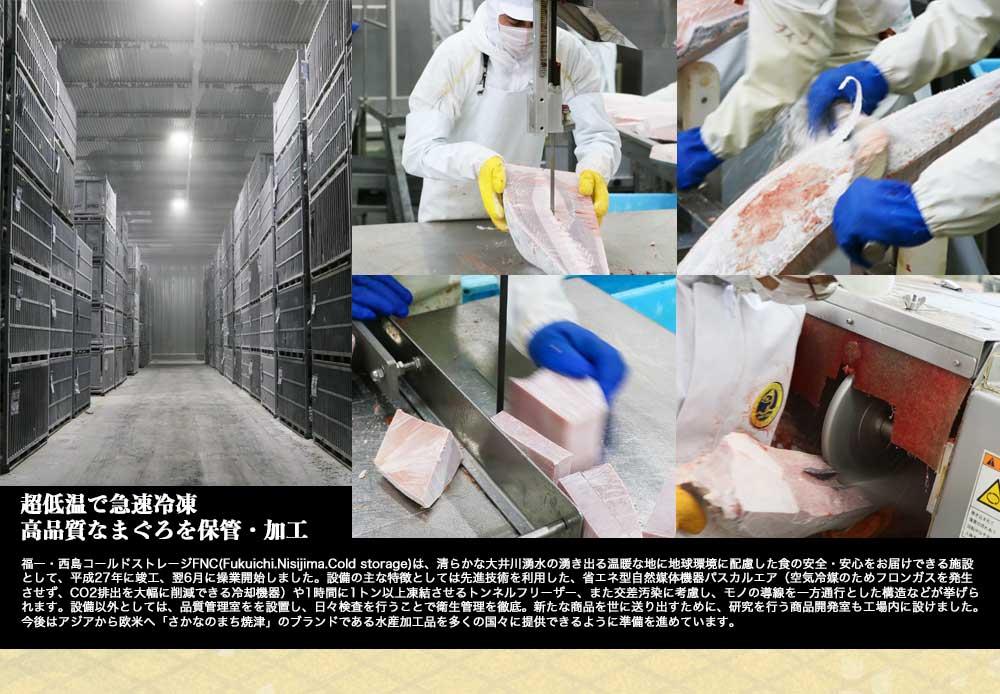 福一漁業 加工場 超低温冷蔵庫
