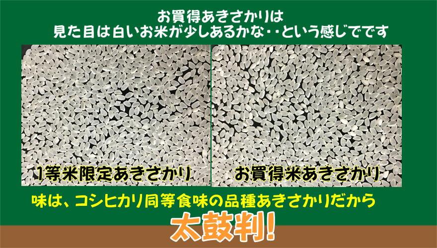 https://gigaplus.makeshop.jp/fukuikomeya/akisakari/159aji3.JPG