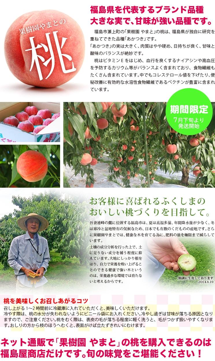 果樹園やまとの桃