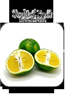 カクテルフルーツ