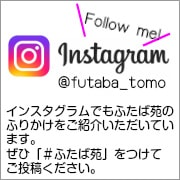 インスタグラムはじめました!