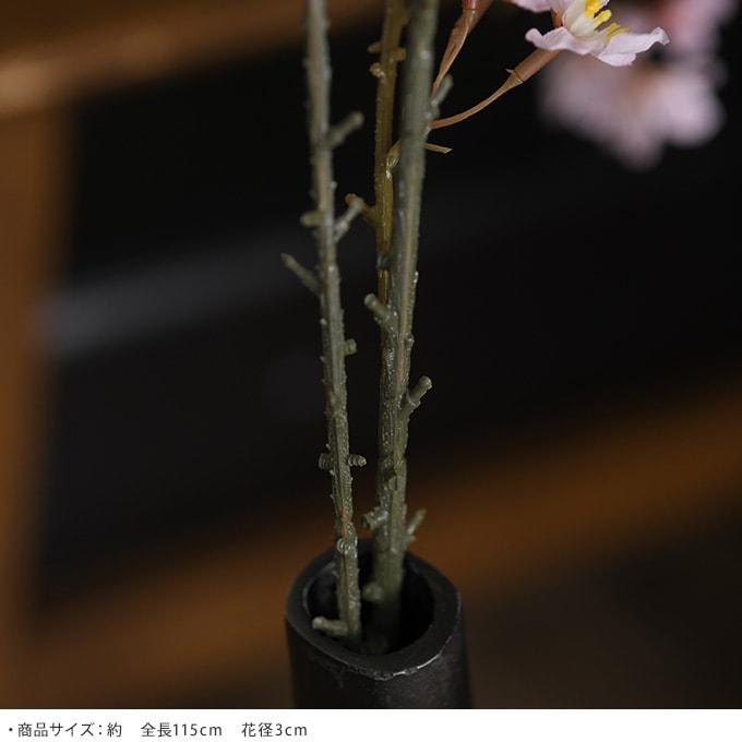 枝垂桜 Ver19