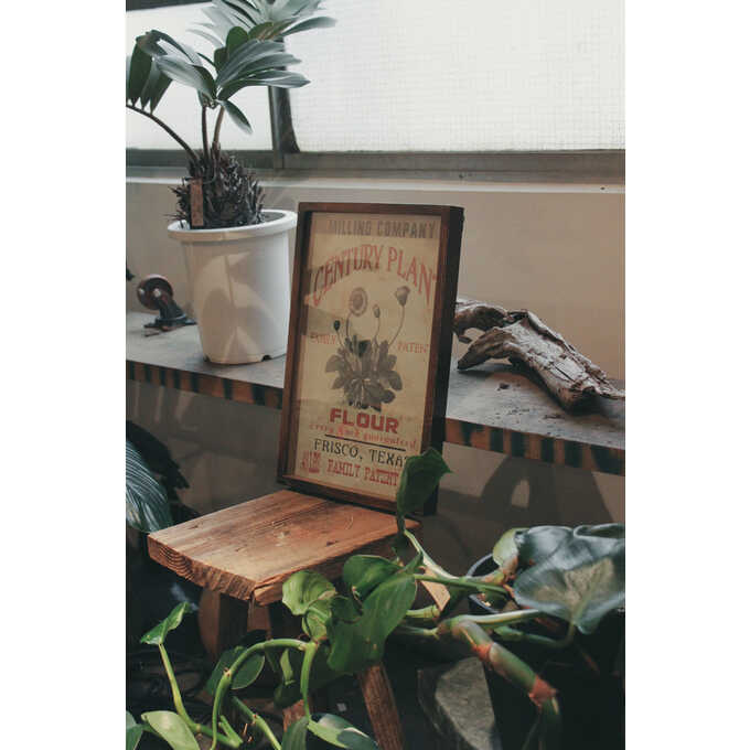 壁掛け アートパネル アメリカン ポスター タンポポ  ウォールデコ アート インテリア おしゃれ 絵 アメリカ ビンテージ