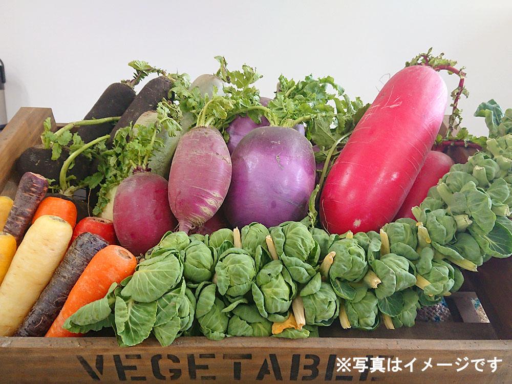 おまかせ野菜セット3000円