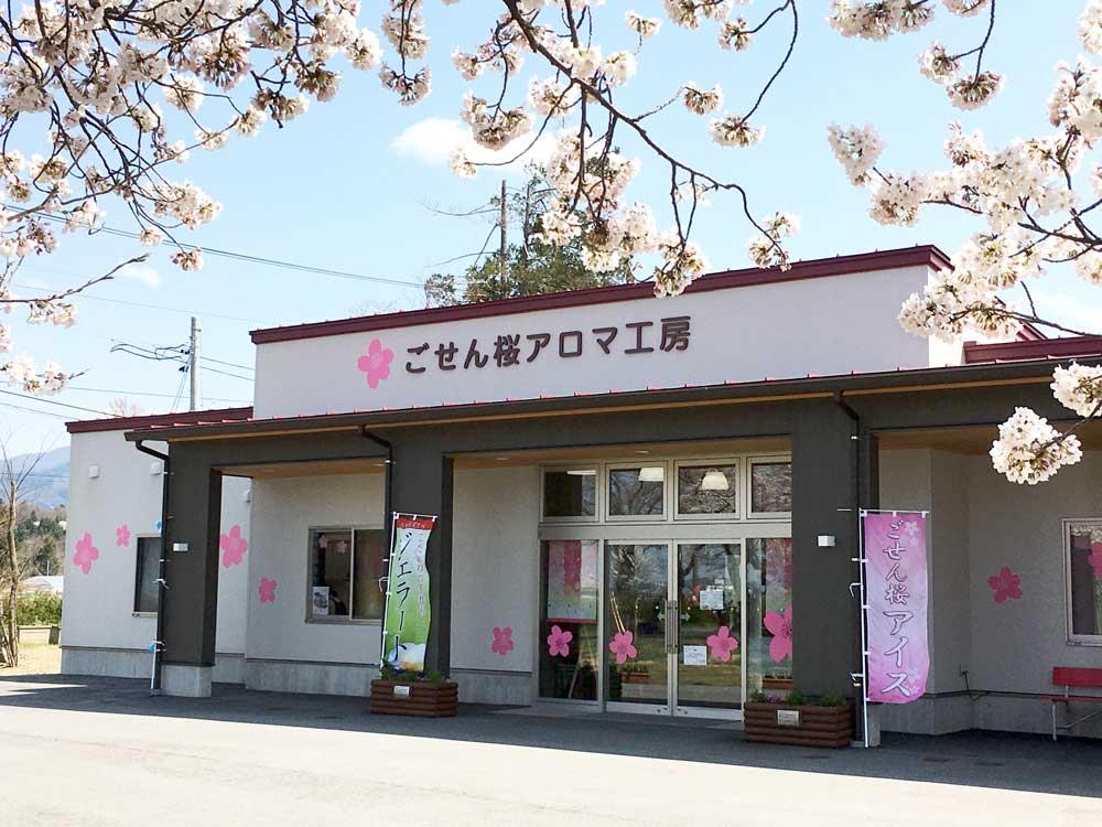 ごせん桜花うどん&ごせん桜葉うどん 各5袋箱入り