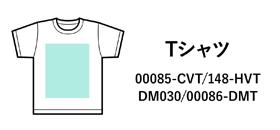 TシャツTOMS
