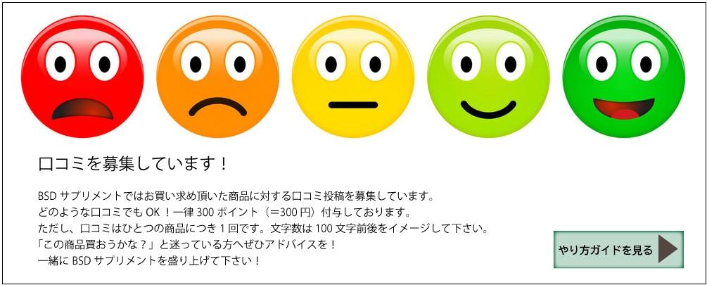 https://gigaplus.makeshop.jp/gcom272/rating/rating2019.html