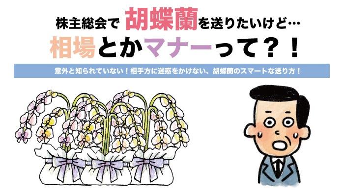 株主総会で胡蝶蘭を送りたいけど、相場とかマナーって?