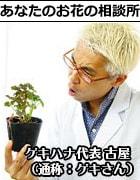 あなたのお花の主治医:フルヤです!