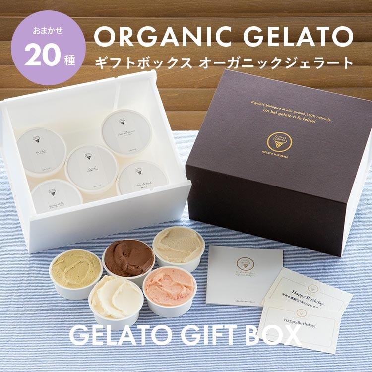 オーガニックジェラート GELATO NATURALE おまかせ20個セット 無添加アイスクリーム