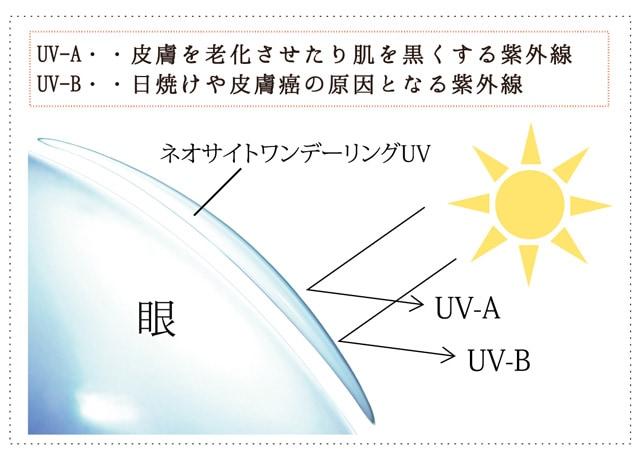 ネオサイトワンデーリングUV_紫外線吸収剤を配合、UV-Aを83%、UV-Bを98%カットします。(スマホサイト)