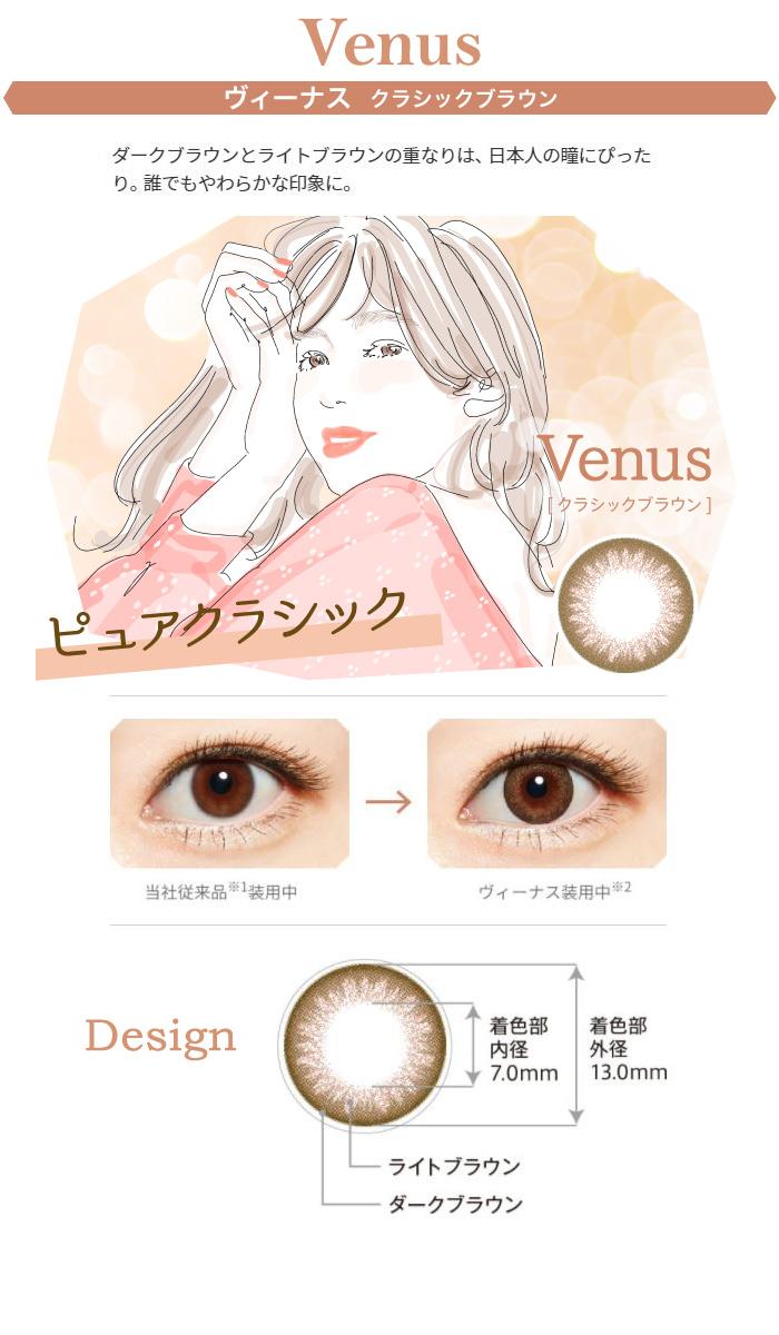 スターリー:Venusヴィーナス クラシックブラウン