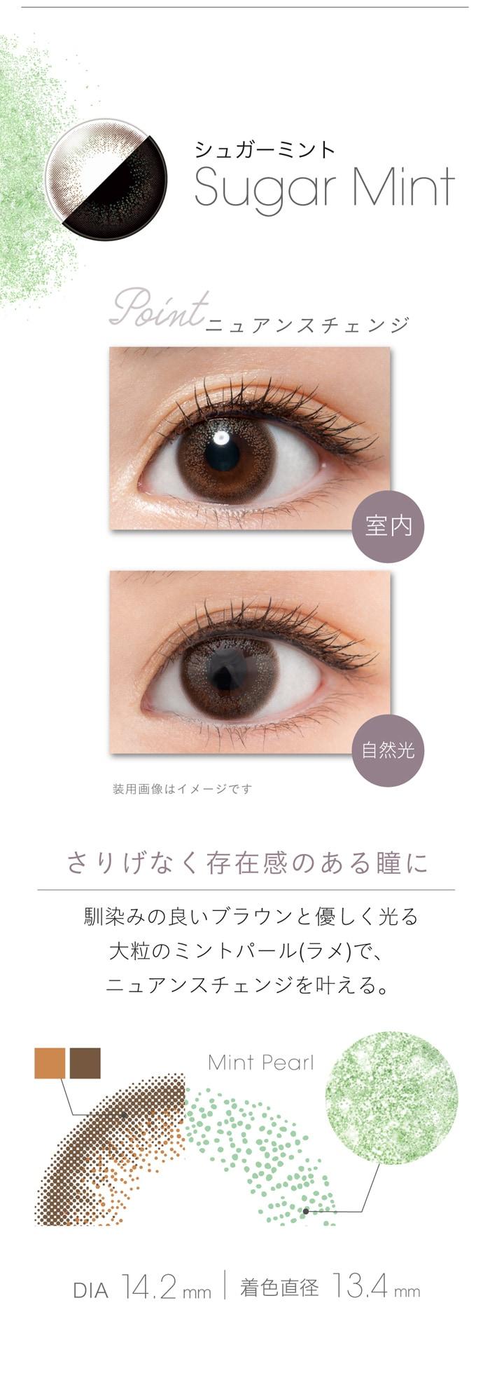 フェアリーワンデーシマーリング(10枚入):シュガーミント さりげなく存在感のある瞳に
