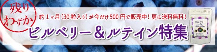 ビルベリー500円