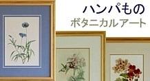ハンパものボタニカルアート
