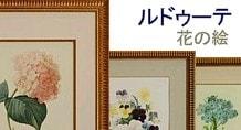 ルドゥーテ 花の絵