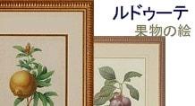 ルドゥーテ 果物の絵