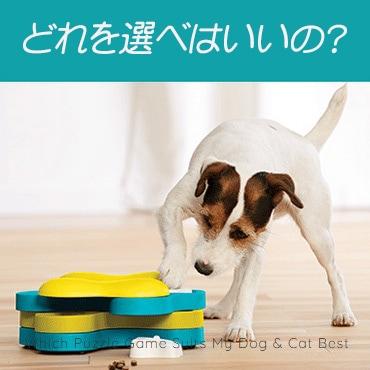 うちの犬と猫にぴったりのパズルゲームは?