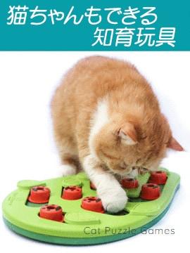 ネコ用知育玩具