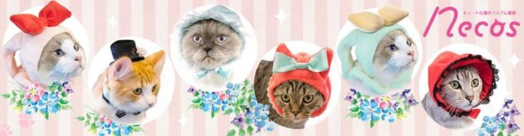 キュートな猫のコスプレグッズ【necos】