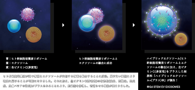 新原料「ハイブリッドエクソソーム+(プラス)※」の誕生