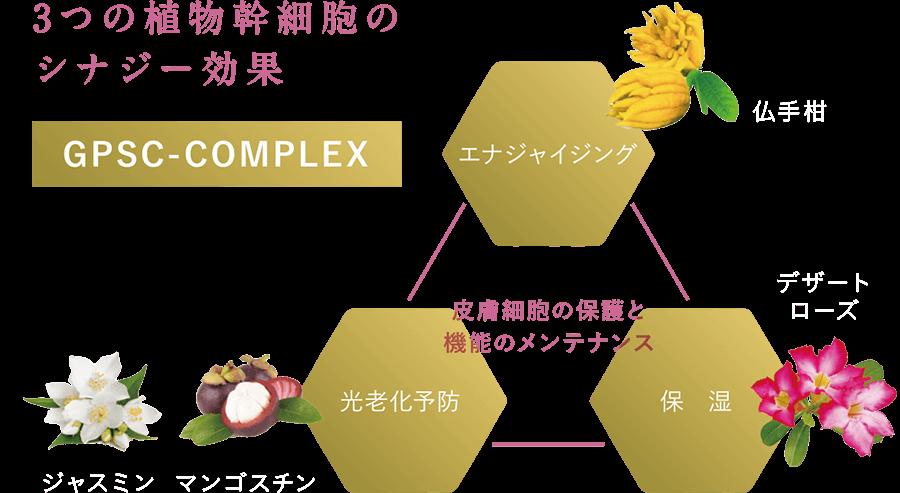 3つの植物幹細胞のシナジー効果