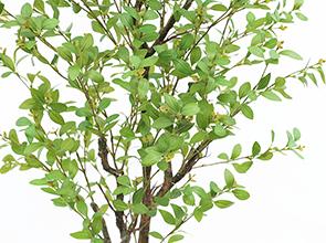 フェイクグリーンフィッカスツリー葉