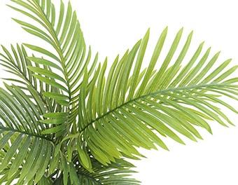 人工観葉植物アレカヤシ根本