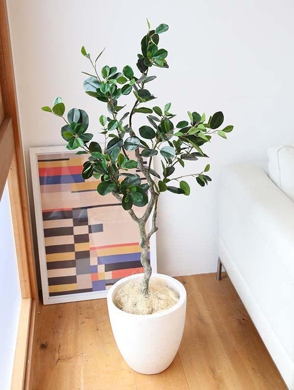 フェイクグリーン フランスの木