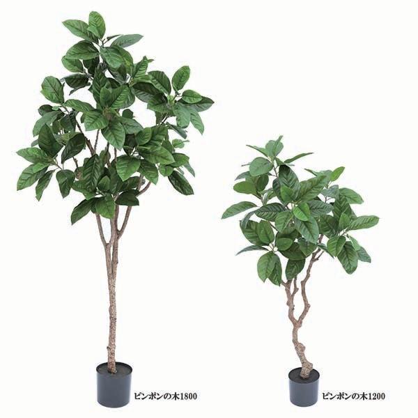 人工観葉植物ピンポンの木1200 1800