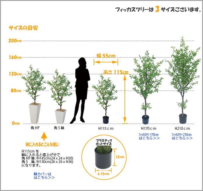 フィッカスツリー1150サイズ