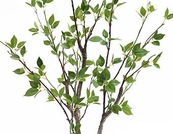 人工観葉植物シャラの木1200葉