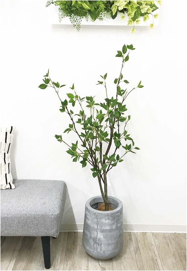 フェイクグリーン シャラの木