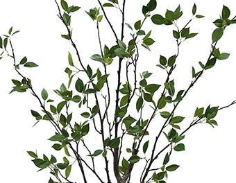 人工観葉植物シャラの木1800葉
