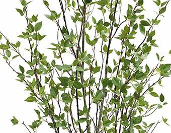 人工観葉植物ピンポンの木1800葉