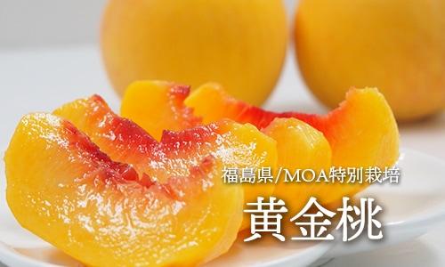 福島黄金桃