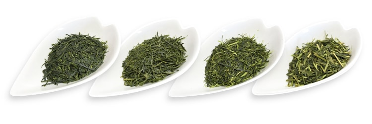 茶葉の性質を知る
