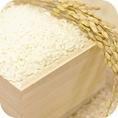 米・もち・豆・雑穀