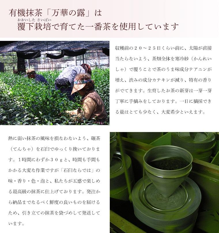 抹茶の特徴