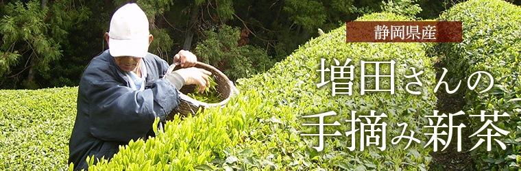 増田さんの手摘み新茶