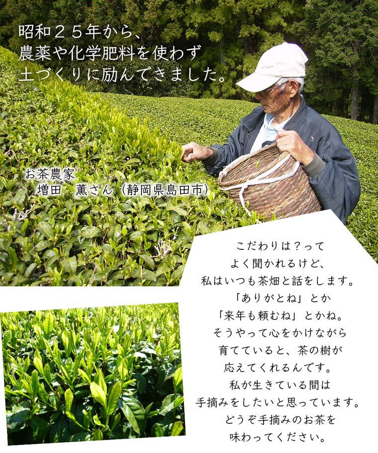 お茶農家増田さん