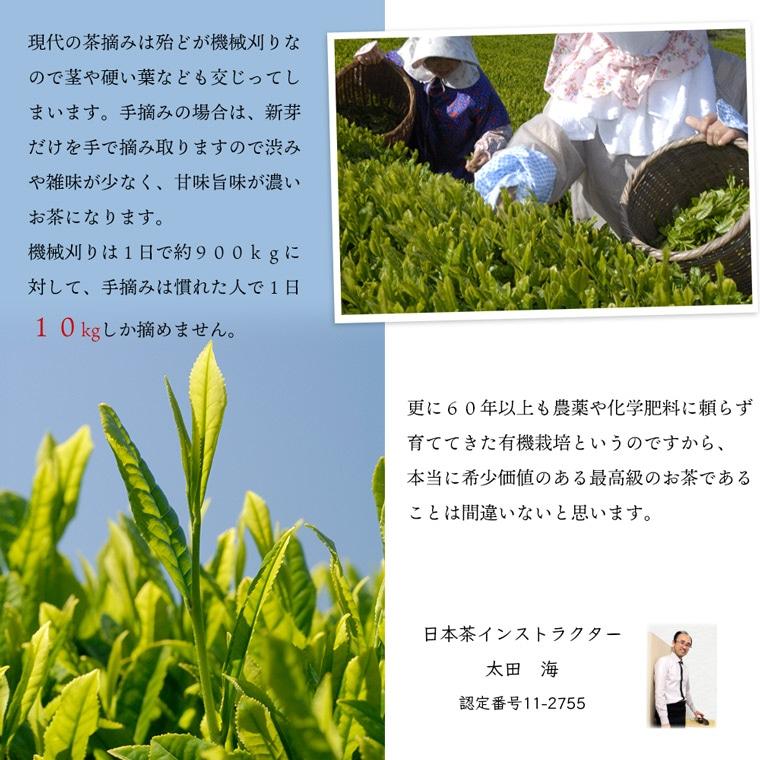 お茶インストラクター太田さん