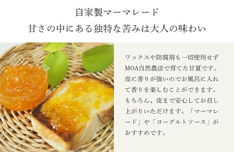 甘夏の特徴と料理