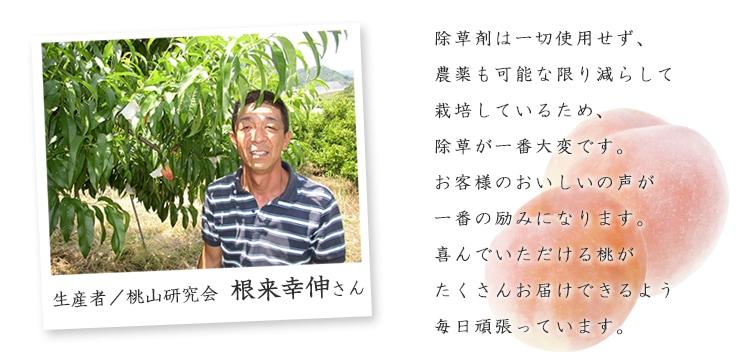 生産者桃山研究会根来幸伸さん