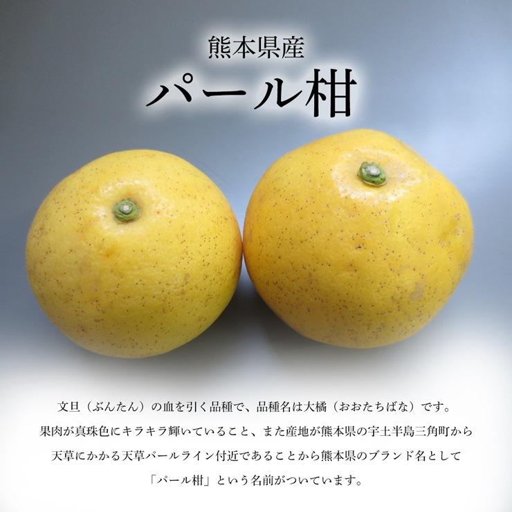 熊本県産パール柑