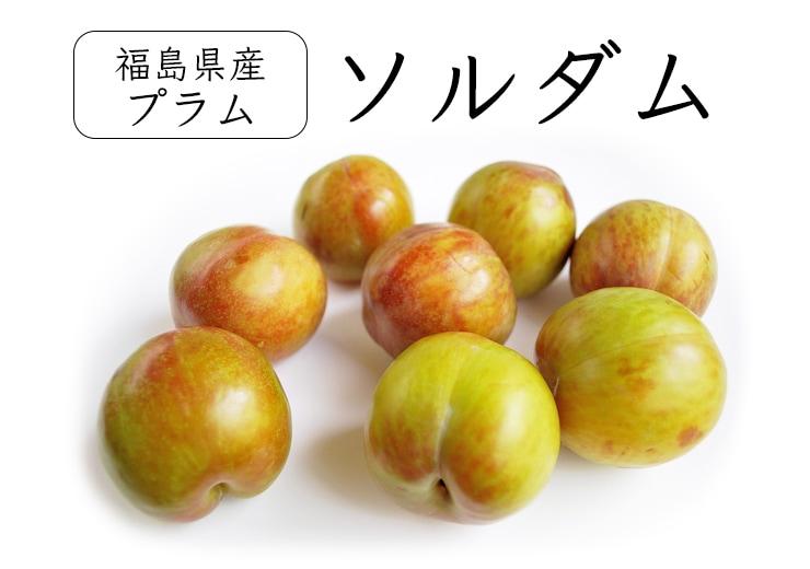 福島県産プラムソルダム