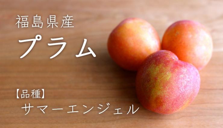 福島県産プラムサマーエンジェル